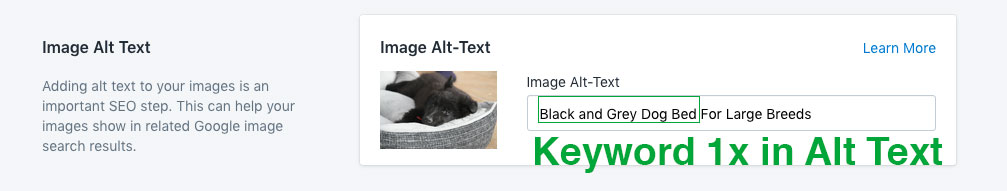 alt text descriptions seo