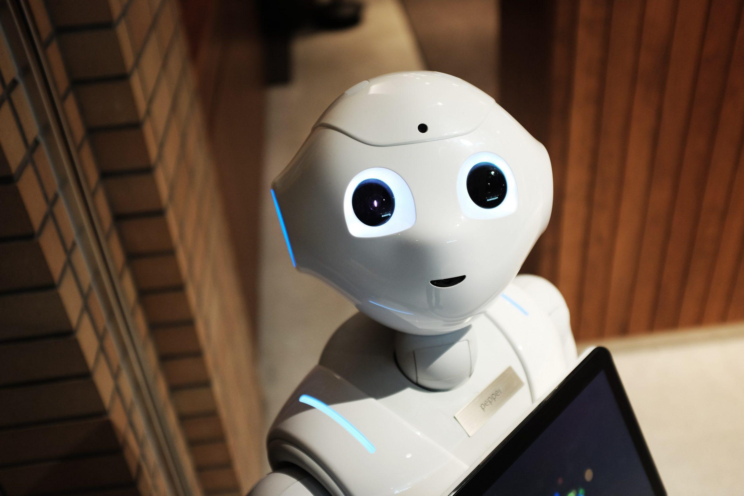 shopify robots txt file